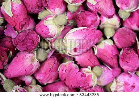 Dried rosebuds background texture closeup. Pink rosebud macro close up of heap.