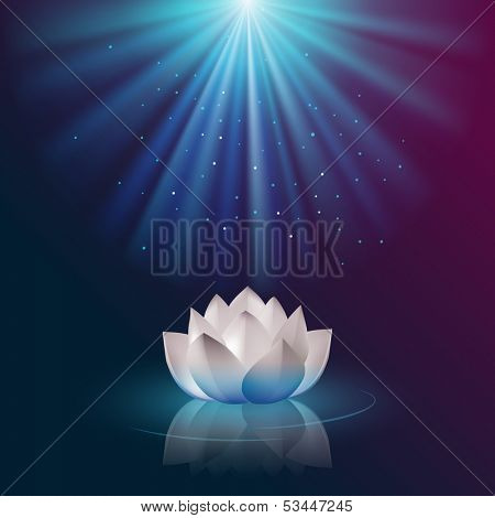 Lotus flower, eps10 vector
