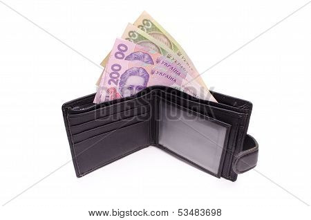 Ukrainian Money In Purse