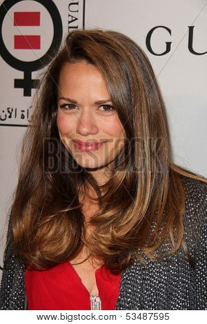 LOS ANGELES - NOV 4:  Bethany Joy Lenz at the Equality Now Presents Make Equality Reality at Montage Hotel on November 4, 2013 in Beverly Hills, CA