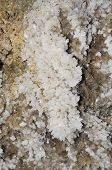 stock photo of crystallography  - Druze gypsum crystals in the cave Ukraine - JPG