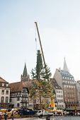 Strasbourg Christmas Tree Erected.