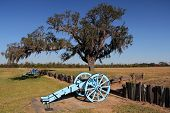 picture of battlefield  - Artillery Pieces at Chalmette Battlefield - JPG