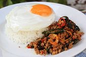 Pad Krapao Moo, Spicy Stir-fried Pork With Thai Holy Basil And Chili On The Steam Rice