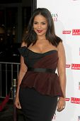 LOS ANGELES - NOV 5:  Sanaa Lathan at the