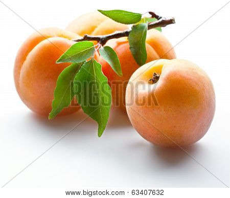 Fresh ripe apricot with leaves on white
