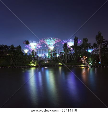 Singapore Garden by the Bay or Supertree Grove night view with colorful illumination