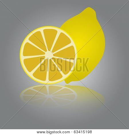 colorful lemon eps10