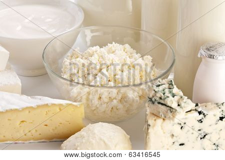 Different milk products: cheese; cream; milk. On a white background.
