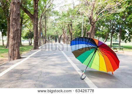Multicolored Umbrella On The Sidewalk.