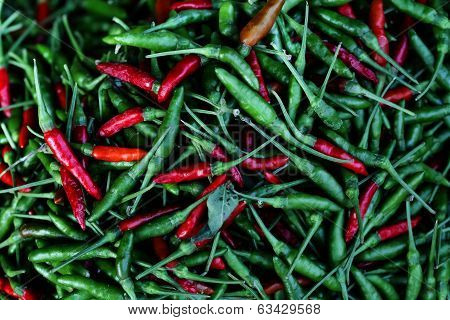 The picture shows a pile of small, red and spicy chili