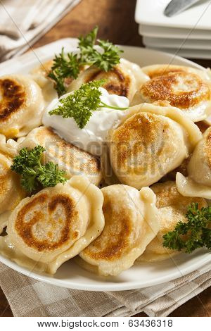 Homemade Polish Pierogis With Sour Cream