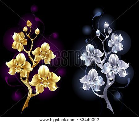 Gold And Silver Orchid
