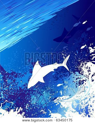 Marine Background With A White Shark