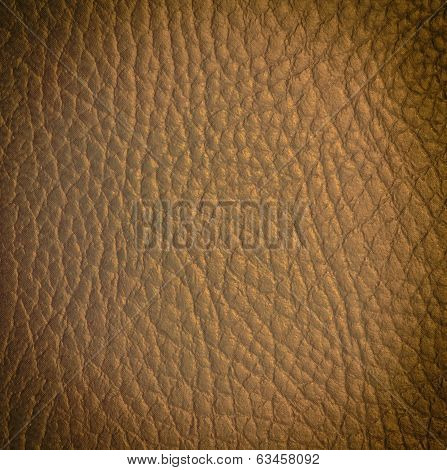 Light Brown With Golden Reflex Leather Texture