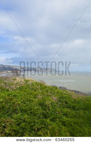Portrait Format Rugged Coastal View
