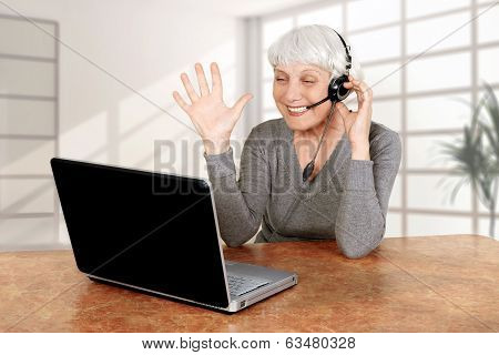 Elderly Woman At The Computer