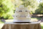 View of a wedding cake on table at the park