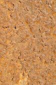picture of oxidation  - Full frame take of an oxidized sheet of metal - JPG