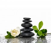 picture of gardenia  - Spa Background with gardenia flowers and stacked stones - JPG