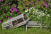 picture of lobster trap  - Two lobster traps used as ornaments in a flower bed - JPG