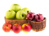 Green and red apples in a wicker baskets, isolated on white.