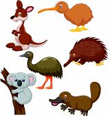 pic of platypus  - Vector illustration of Australian animal cartoon isolated on white background - JPG