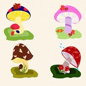 image of fairy-mushroom  - bright picture - JPG