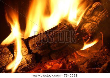 Inicie sesión en fuego