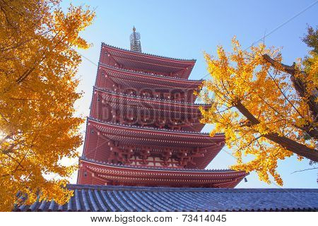 Sensoji Temple (asakusa)