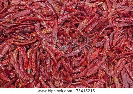 Red pepper for spicy cooking background. dried chilies