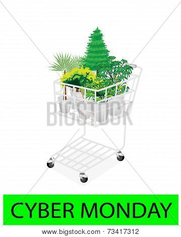 Green Trees And Plants In Cyber Monday Shopping Cart
