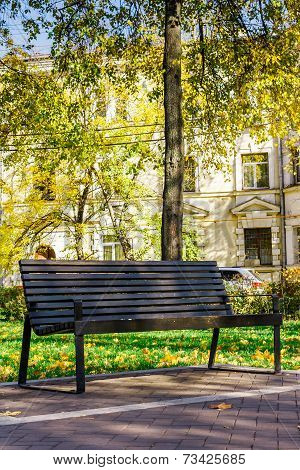 wooden bench in a quiet city park