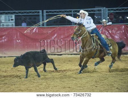 Clark County Fair And Rodeo