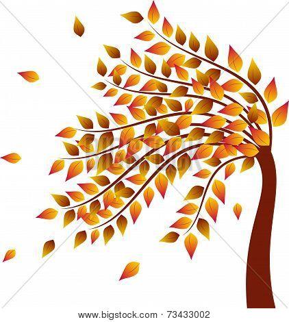 Tree, Fall Tree Vector