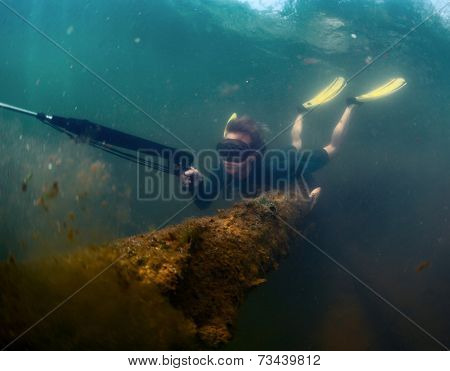 Young lady spearfishing in the pond using breath hold