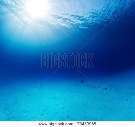 Underwater shot of the sandy bottom