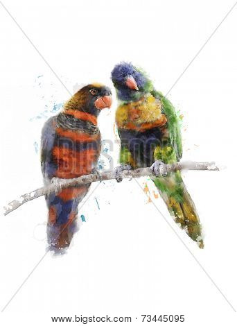 Watercolor Digital Painting Of Rainbow Parrots(Rainbow Lorikeet)