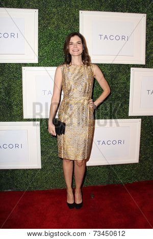 LOS ANGELES - OCT 7:  Betsy Brandt at the Club Tacori 2014 at Hyde on October 7, 2014 in West Hollywood, CA