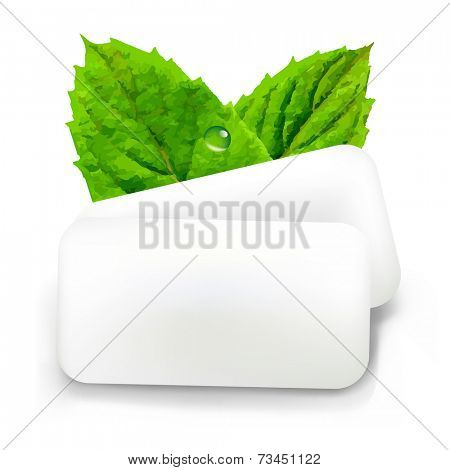 Mint Gum With Gradient Mesh, Vector Illustration