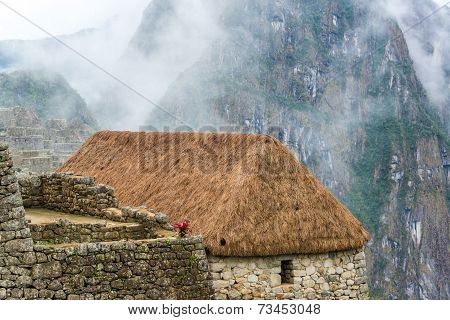 Thatched Roof At Machu Picchu