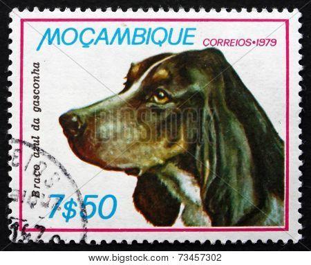 Postage Stamp Mozambique 1979 Blue Gasconha Braco, Dog