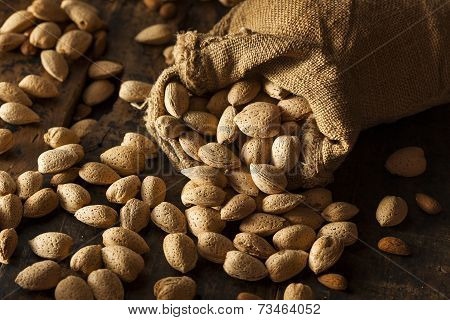 Raw Unshelled Organic Almonds