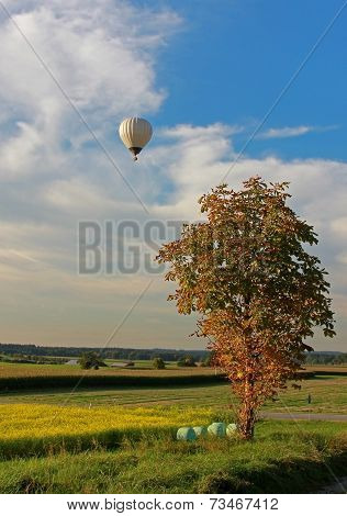 Rural Landscape And Hotair Balloon