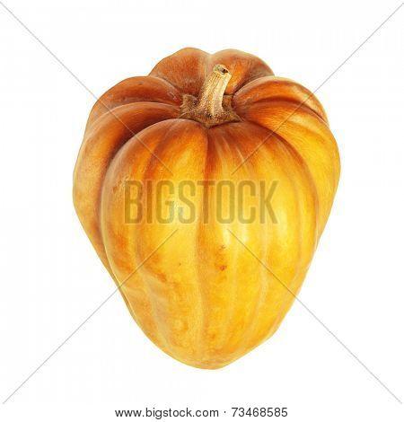 Fresh orange pumpkin isolated on white background with path