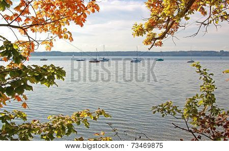Autumnal Branches To Lake Starnberg And Sail Boats
