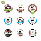 picture of working animal  - Vector beef labels - JPG