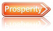 picture of prosperity sign  - prosperity succeed in life and business be happy and successful good fortune happiness financial success sign    - JPG