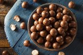 foto of malt  - Dark Chocolate Malted Milk Balls in a Bowl - JPG