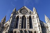 picture of english rose  - Postcard view of York Minster Rose window - JPG